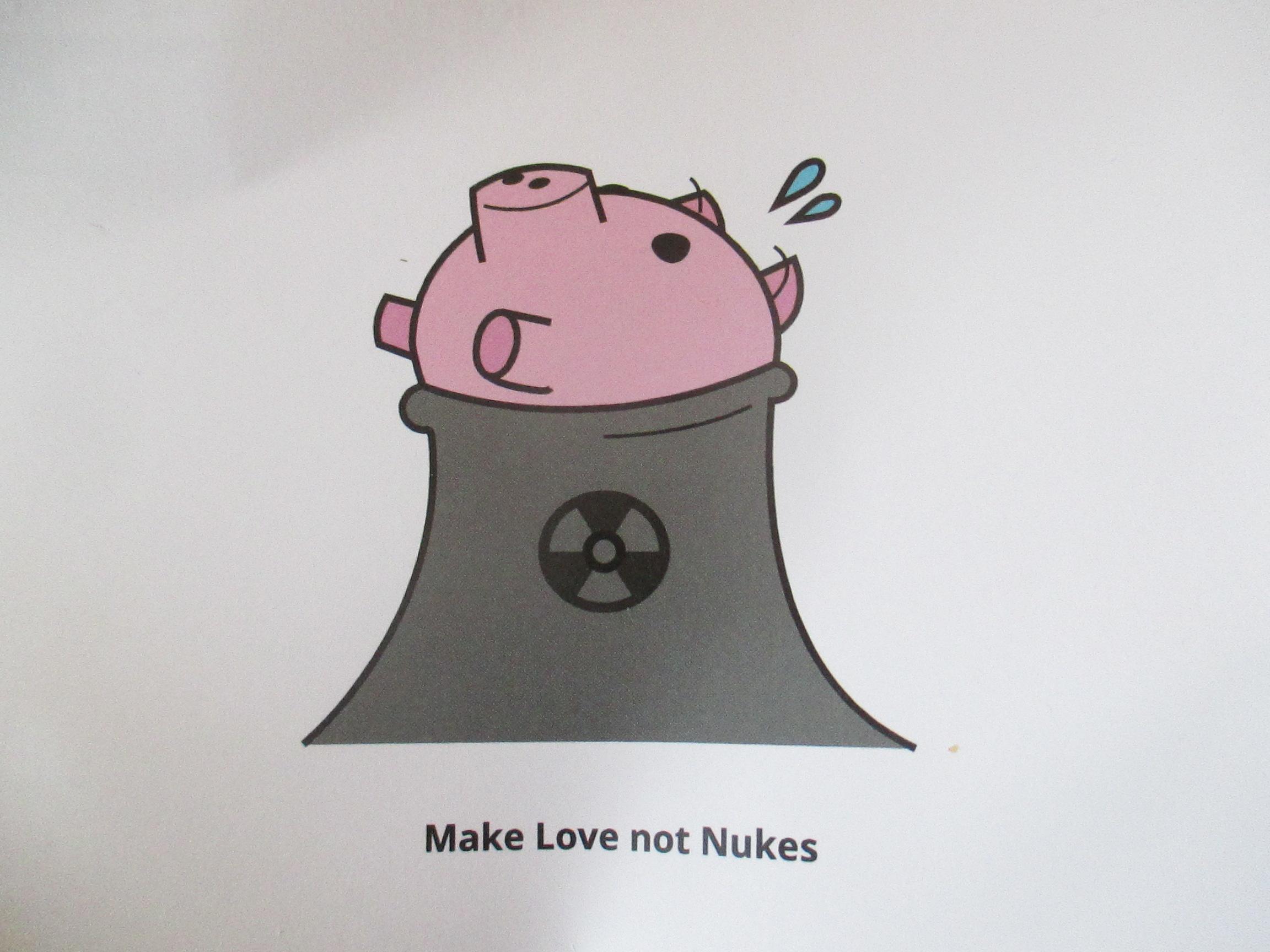 foto kerncentrale varkentje